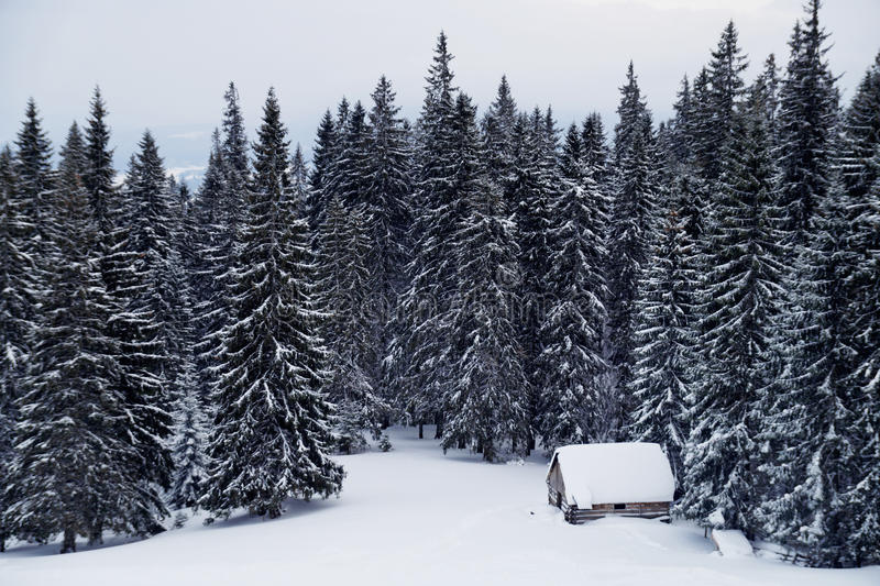 Landschap met snow-covered huis in een opheldering in het hout royalty-vrije stock afbeeldingen