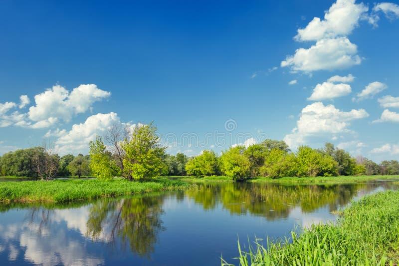 Landschap met vloedwateren van rivier Narew. royalty-vrije stock fotografie