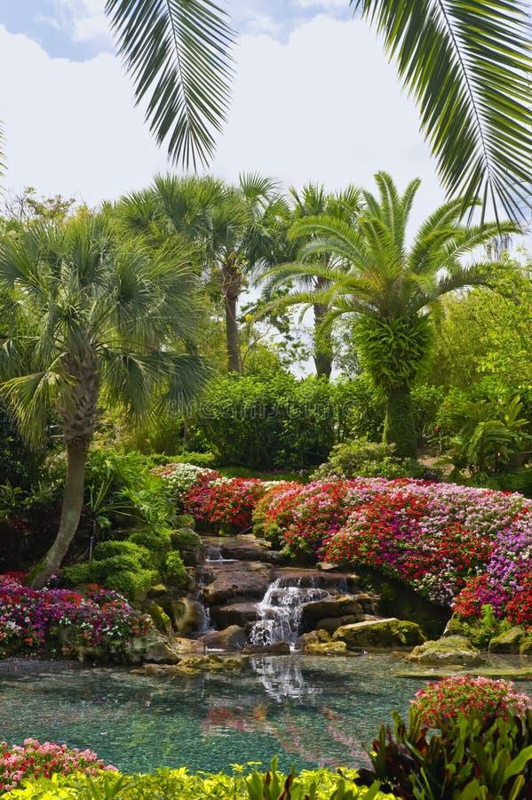 Landschap met Waterval royalty-vrije stock afbeelding
