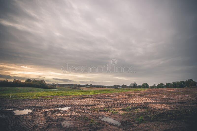 Landschap met wielsporen op een modderig gebied royalty-vrije stock afbeelding