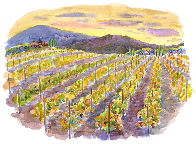 Landschap met wijngaarden en bergen. Waterverf. vector illustratie