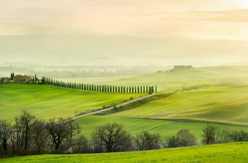 Landschap in mistige ochtend op zonsopgang Toscanië, Italië royalty-vrije stock afbeelding
