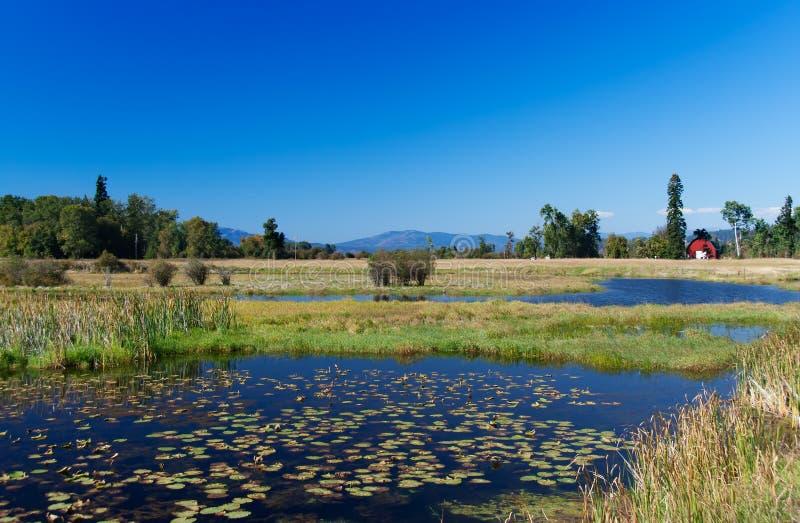 Landschap in Montana stock afbeeldingen
