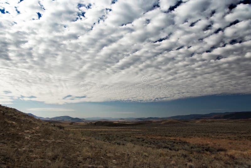 Landschap in Montana met betrokken hemel stock afbeelding