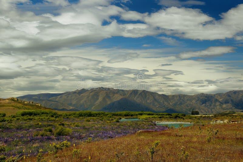 Landschap Nieuw Zeeland - Zuideneiland - landschap dichtbij Zuidelijke Alpen, blauwe hemel met wolken stock afbeelding