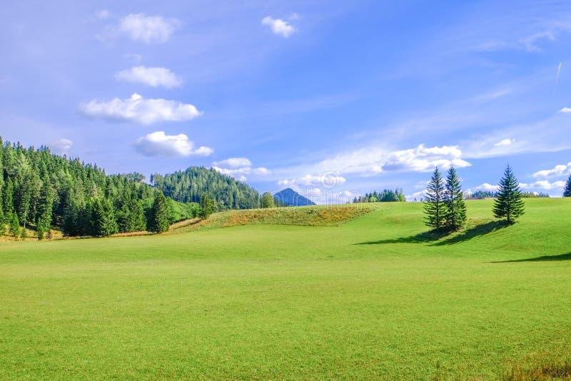 Landschap in Oostenrijk royalty-vrije stock foto