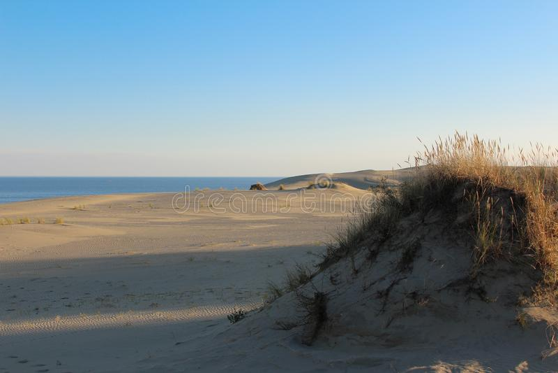 Landschap op de mooie het zandduinen van de Oostzeekust royalty-vrije stock foto