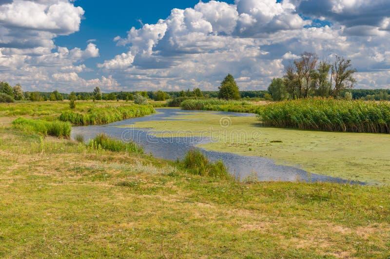 Landschap op een kleine Oekraïense rivier Merla bij zomer royalty-vrije stock foto