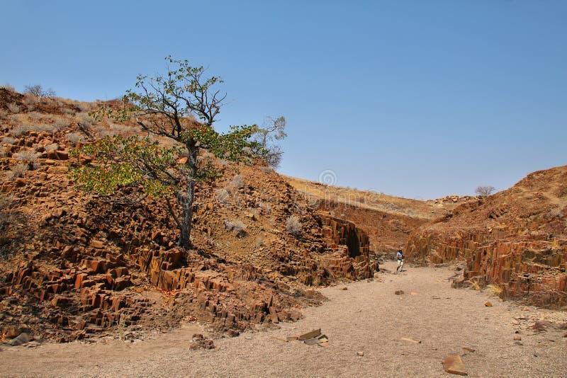 Landschap in Orgaanpijpen royalty-vrije stock afbeeldingen