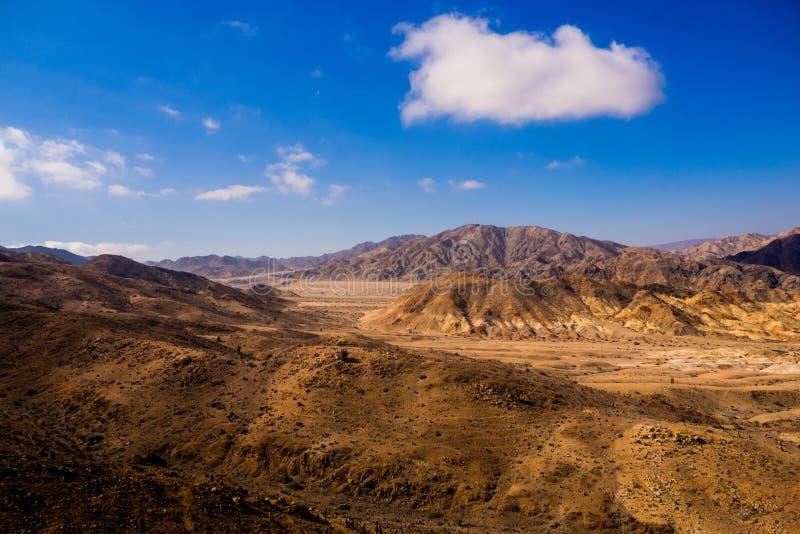Landschap in Pan de Azucar National Park in Atacama-Woestijn in Chili, stock afbeeldingen