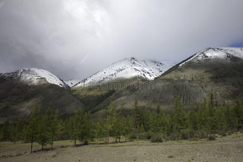 Landschap Rusland Altai In de achtergrondberg Een mooi de herfstlandschap, een mening van het bergmeer stock foto's