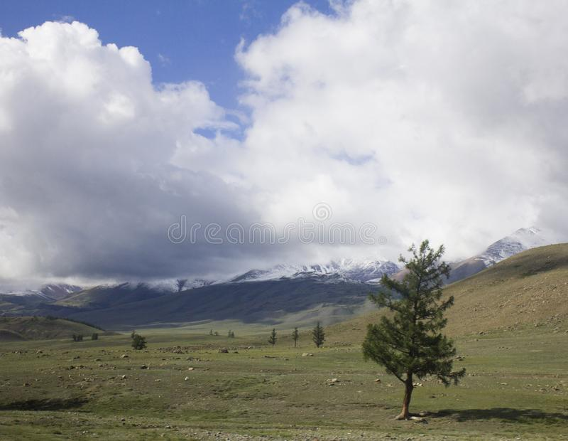 Landschap Rusland Altai In de achtergrondberg Een mooi de herfstlandschap, een mening van het bergmeer stock foto