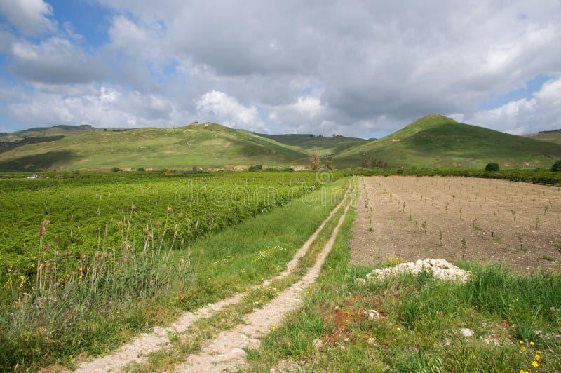 Landschap in Sicilië, Italië stock foto
