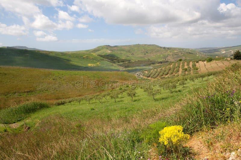 Landschap in Sicilië, Italië royalty-vrije stock foto's