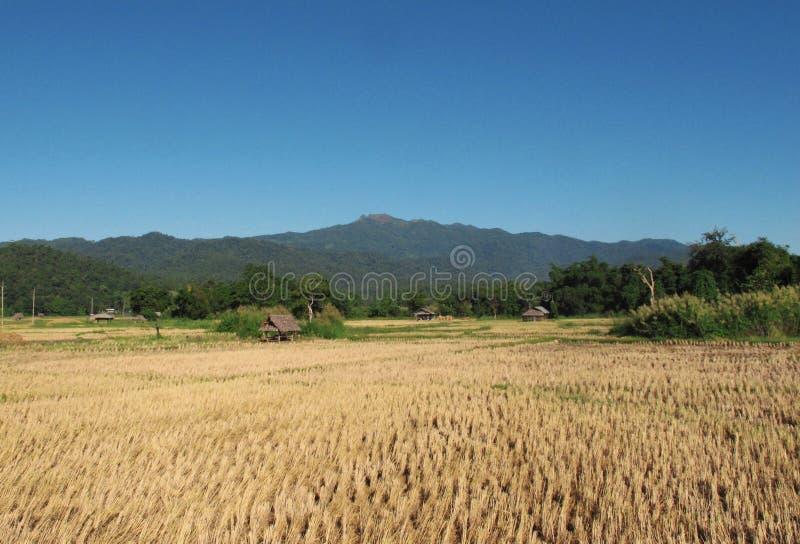 Landschap in Thailand voor het reizen royalty-vrije stock foto