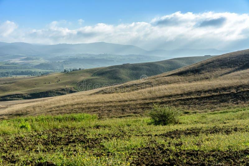 Landschap, Toscanië Val D'Orcia stock afbeelding