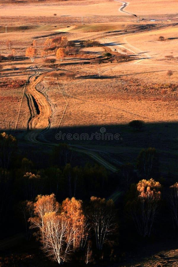 Landschap van Bashang-Weiden stock fotografie