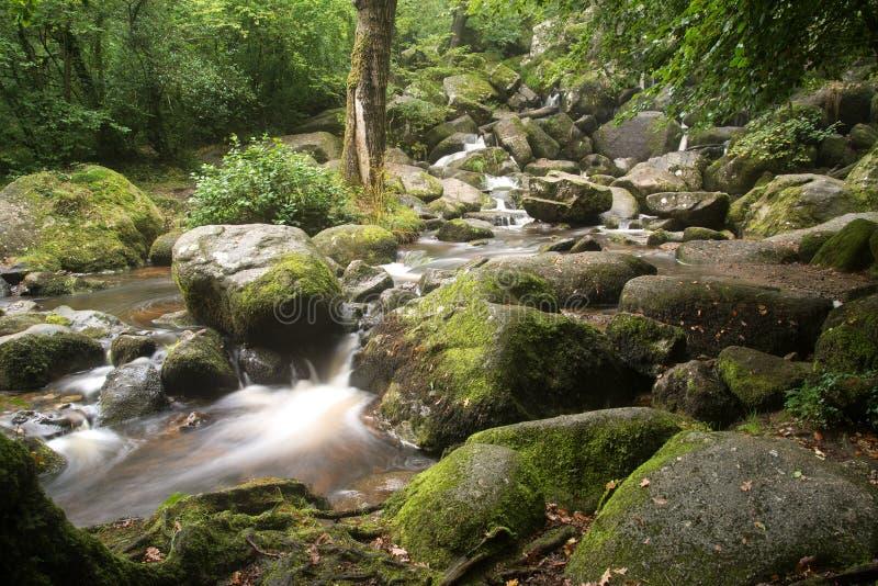 Landschap van Becky Falls-waterval in het Nationale Park Eng van Dartmoor stock afbeelding