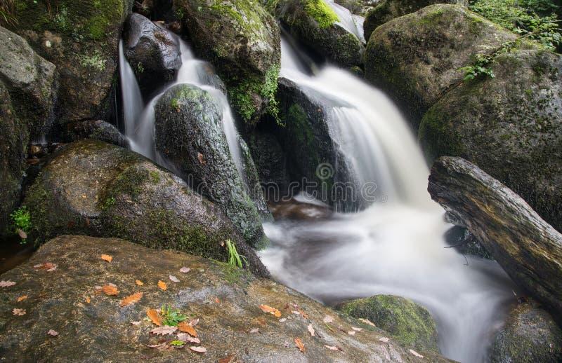 Landschap van Becky Falls-waterval in het Nationale Park Eng van Dartmoor royalty-vrije stock foto's