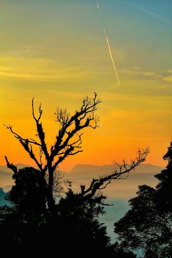 Landschap van berg met hemel, met 3 mooie gele kleuren gouden blauwe slite stock fotografie