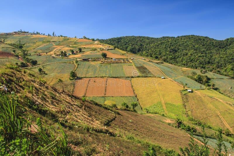 Landschap van bergmening stock fotografie