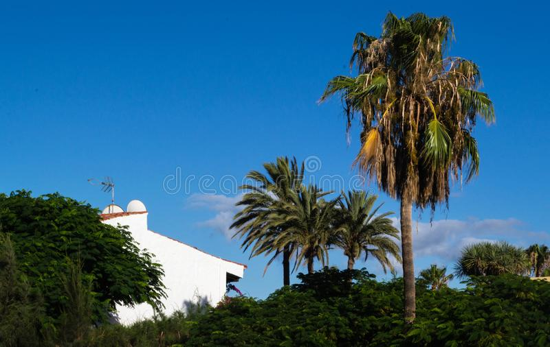 Landschap van blauwe hemel, wit huis met oranje dak en vegetati royalty-vrije stock afbeelding