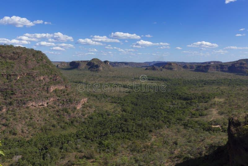 Landschap van Braziliaanse cerrado stock foto