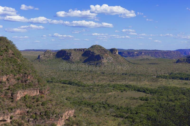 Landschap van Braziliaanse cerrado stock afbeeldingen