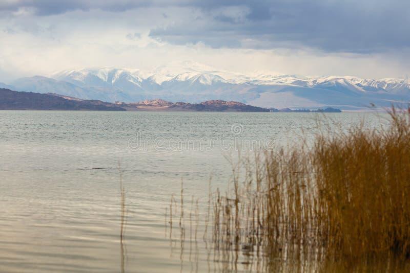 Landschap van de bergen en het meer in Mongolië royalty-vrije stock afbeelding