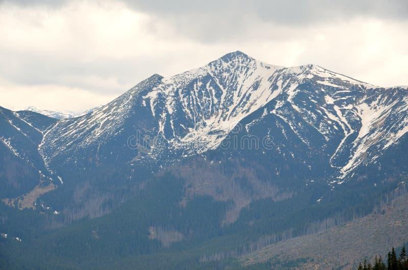Landschap van de de lente het bewolkte berg stock foto's