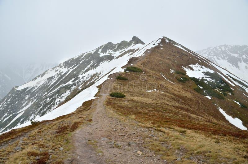 Landschap van de de lente het bewolkte berg royalty-vrije stock afbeeldingen