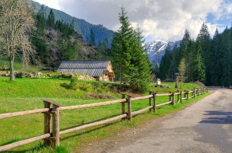 Landschap van de de lente het zonnige berg royalty-vrije stock afbeeldingen