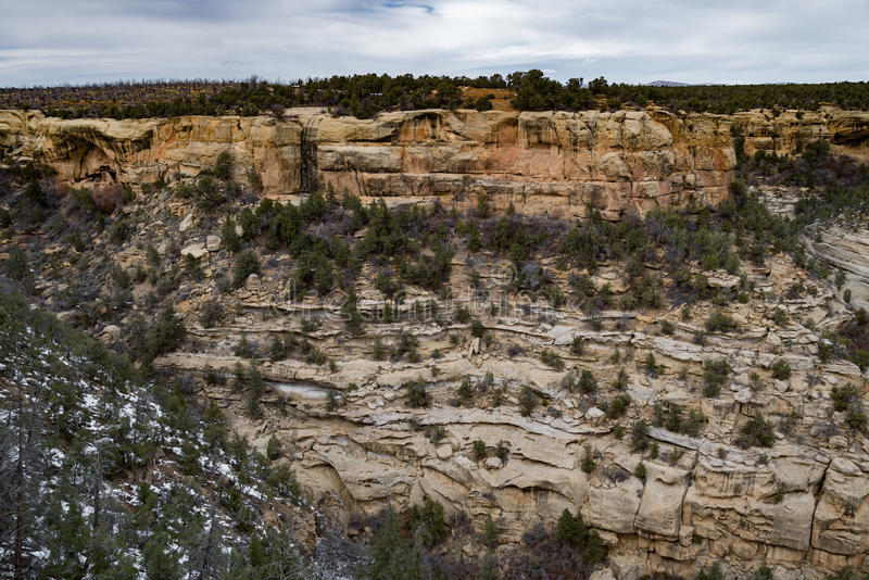 Landschap van de de woestijnberg van het Mesa verde het nationale park stock afbeeldingen