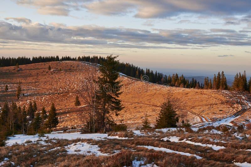 Landschap van de Karpatische Bergen in de vroege lente met de overblijfselen van sneeuw met de weg royalty-vrije stock foto