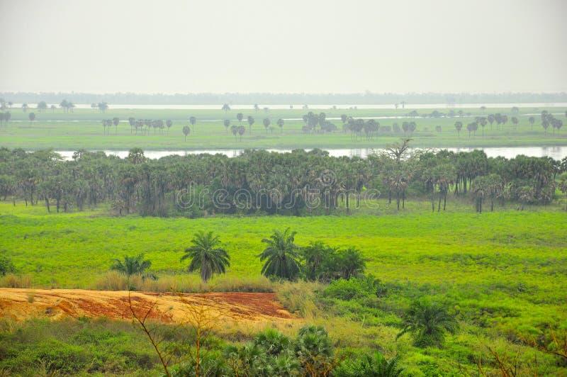 Landschap van de Rivier de Kongo royalty-vrije stock foto's