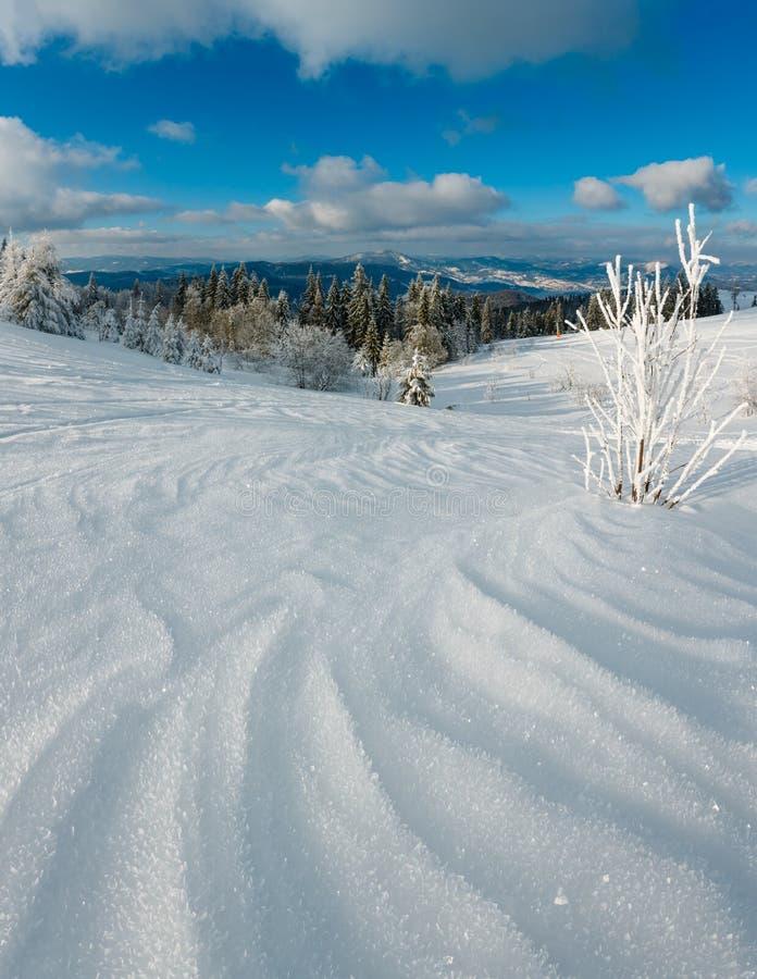 Landschap van de de winter het kalme berg met mooie berijpende bomen en sneeuwbanken op hellings Karpatische Bergen, de Oekraïne, stock afbeeldingen