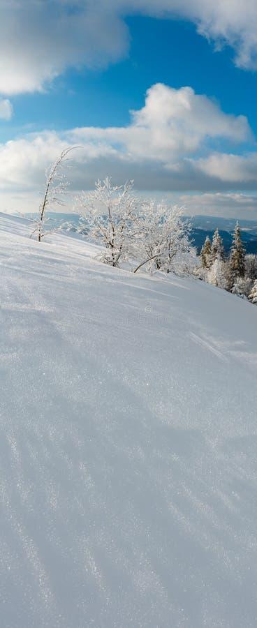 Landschap van de de winter het kalme berg met mooie berijpende bomen en sneeuwbanken op hellings Karpatische Bergen, de Oekraïne  royalty-vrije stock afbeelding
