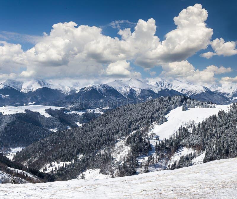 Landschap van de winterbergen met heel wat sneeuw bij zonnige dag Schilderachtige en schitterende winterse scène stock foto