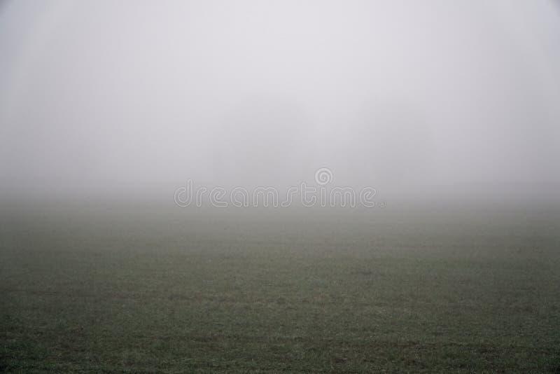 Landschap van dichte mist in het gebied en het silhouet van bomen in de warme winter stock afbeelding