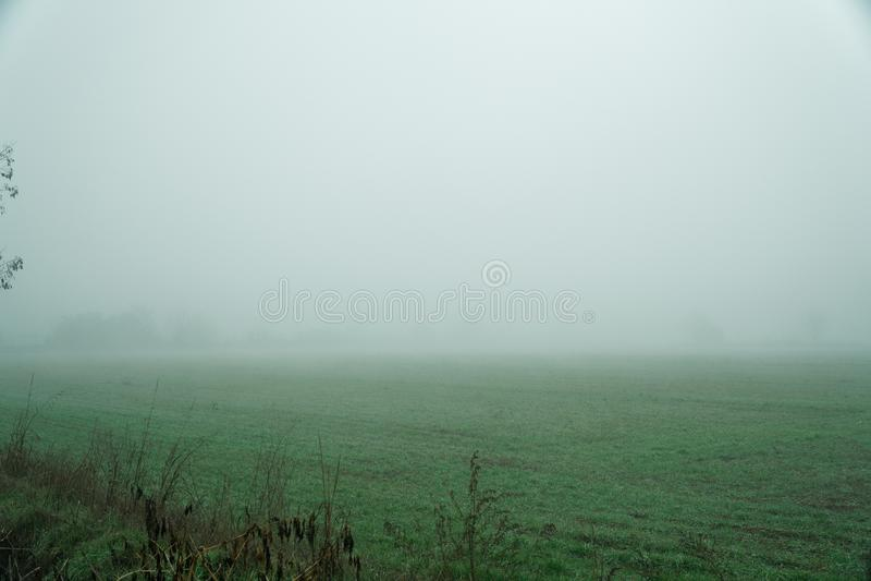 Landschap van dichte mist in het gebied en het silhouet van bomen in de warme winter royalty-vrije stock foto's
