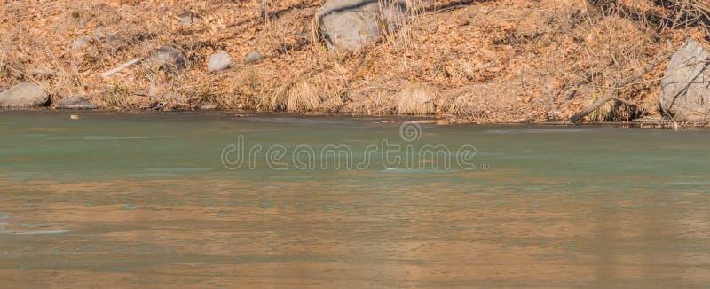 Landschap van een rivier met oever van droge gras en rotsen stock afbeeldingen