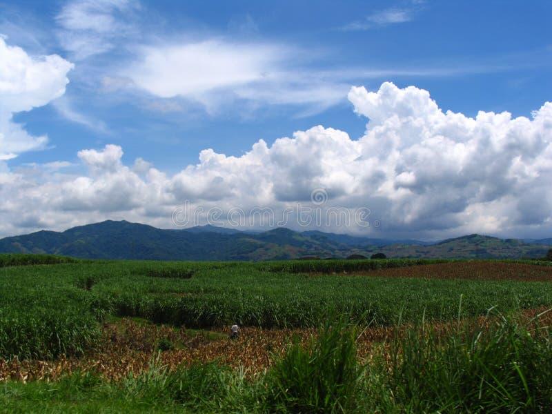 Landschap van El Salvador stock foto