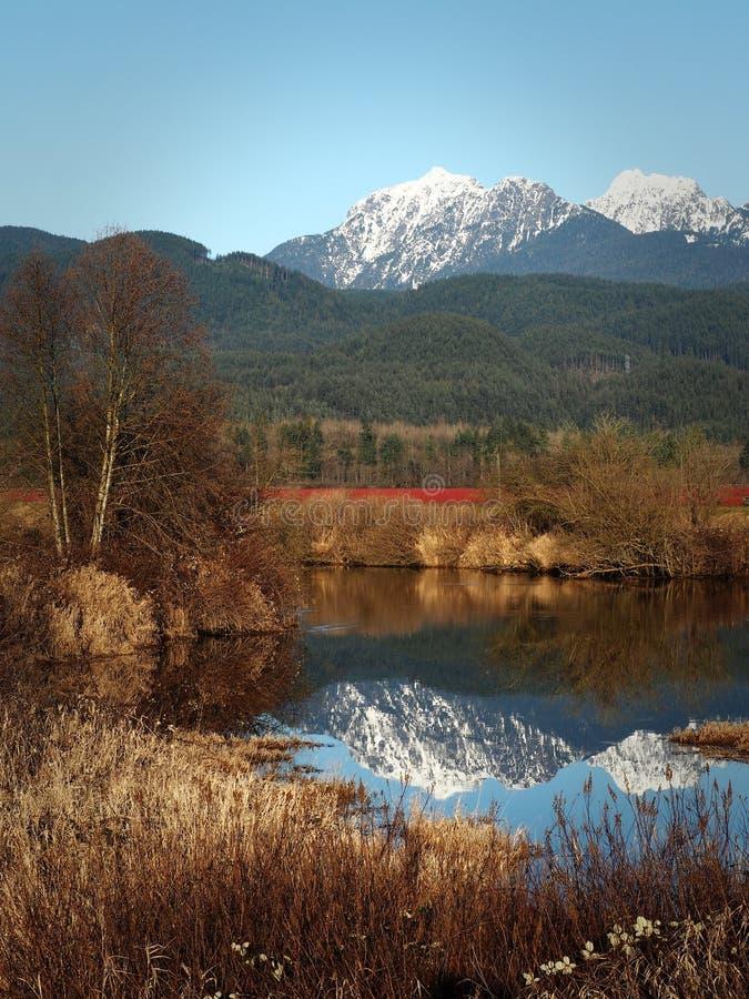 Landschap van Esdoornrand, Brits Colombia, Canada royalty-vrije stock fotografie