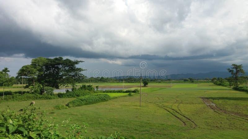 Landschap van greeneyes stock foto