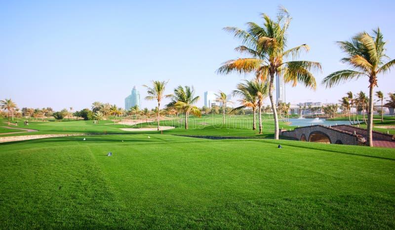 Landschap van groene golfcursus stock afbeeldingen