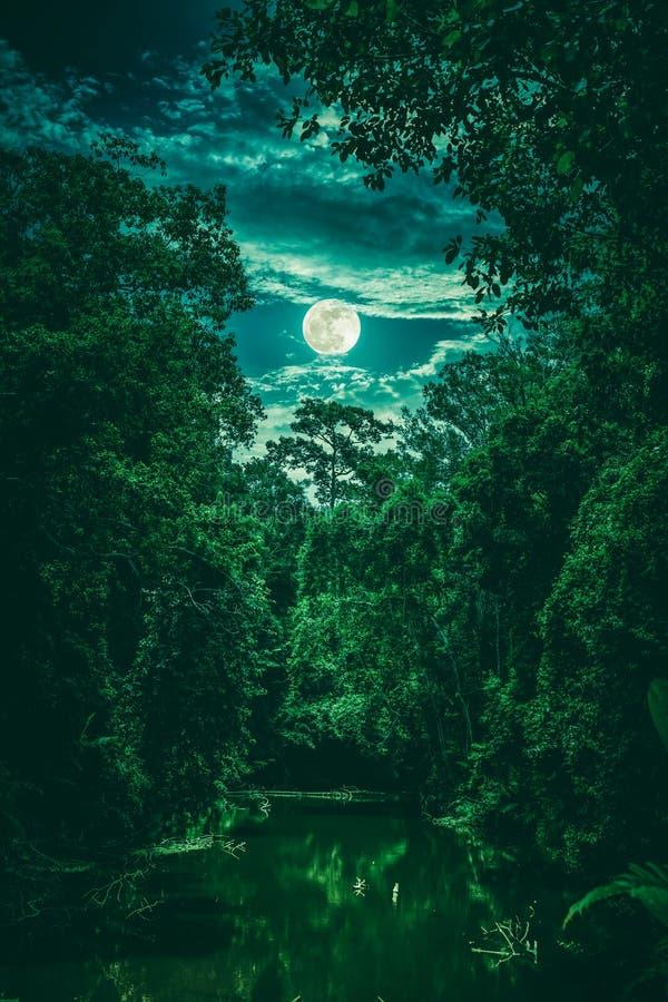 Landschap van hemel met wolken en maan over sereniteitsaard in FO stock afbeeldingen