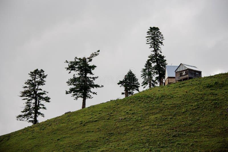 Landschap van het blokhuis die zich op de heuvel met altijdgroene bomen bevinden royalty-vrije stock foto