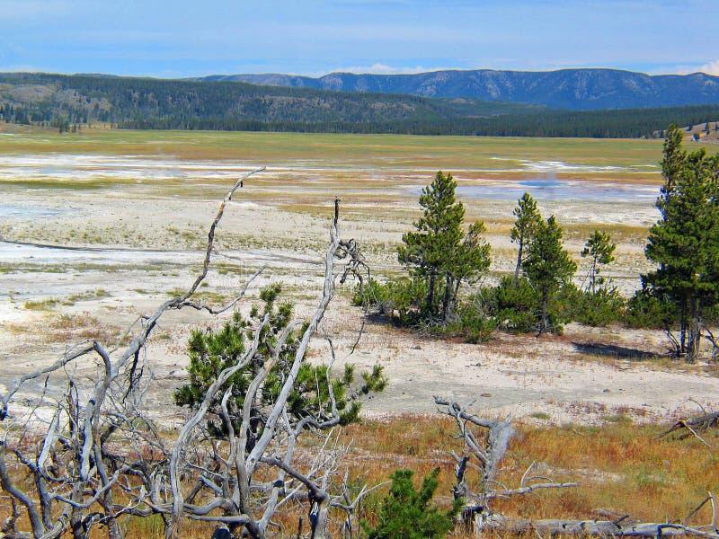 Landschap van het de Geiserbassin van het Yellowstonepark het geothermische stock fotografie