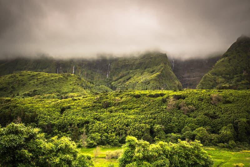Landschap van het Eiland Flores De Azoren, Portugal stock foto's