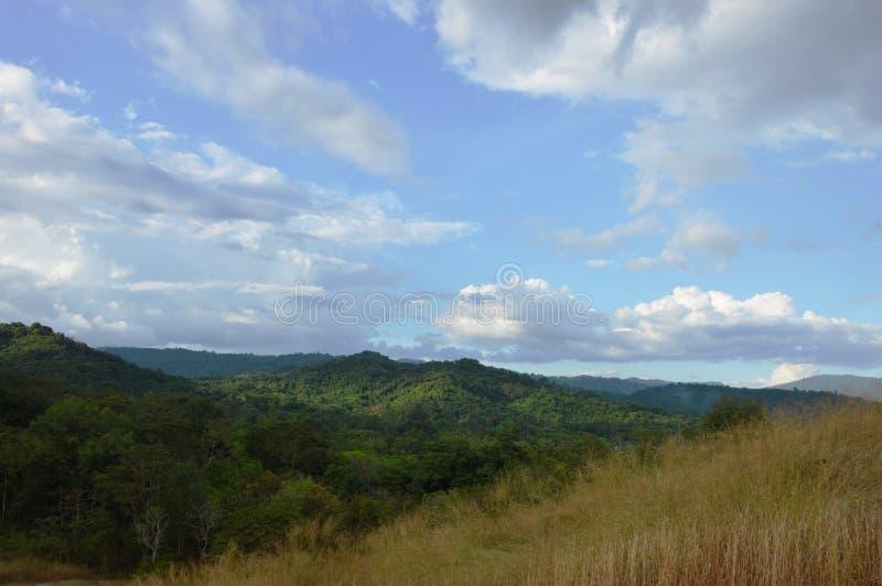Landschap van het gebied die van de grasbloem van wind op de berg van Khao Lon in Thailand blazen royalty-vrije stock afbeelding